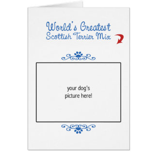 Custom Photo! Worlds Greatest Scottish Terrier Mix Card