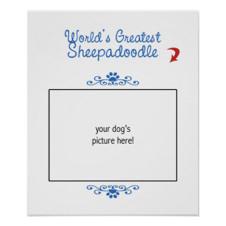 Custom Photo! Worlds Greatest Sheepadoodle Poster