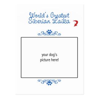 Custom Photo! Worlds Greatest Siberian Laika Postcard