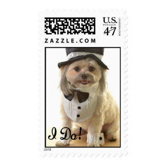 Custom postage stamp cute dog in wedding tuxedo