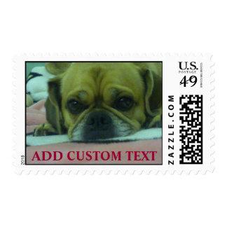 Custom Puggle dog stamp