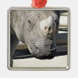 Custom Rhinoceroses Photo Design. Ornaments