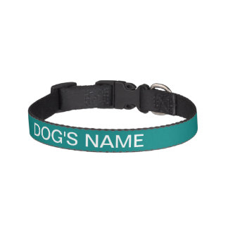 Custom Teal Green Classy Color Coordinated Pet Collar