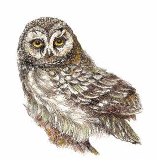 Custom Watercolor Owl, Bird, Nature, Wildlife Statuette
