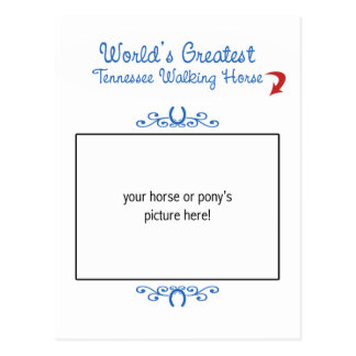 Custom Worlds Greatest Tennessee Walking Horse Postcard