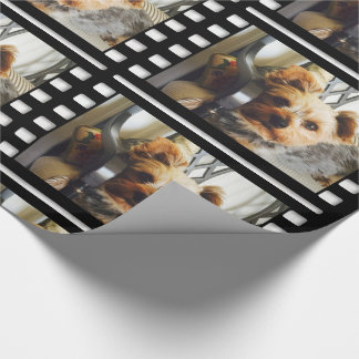Custom Your Photo or Yorkie on Bench Wrapping Paper