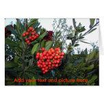 Customcard del navidad: Añada su texto y represént Felicitación