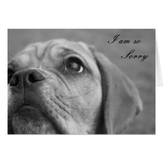 Customisable Im Sorry Cute Puppy Greeting card