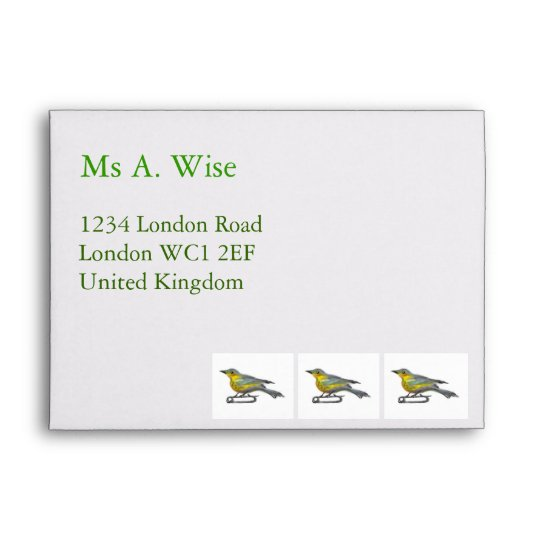 Customizable: 3 Birdies Envelope