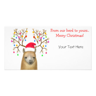 Customizable Alpaca Xmas Photo Card