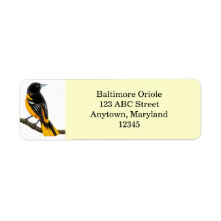 Customizable Baltimore Oriole Bird Avery Label