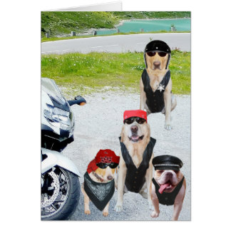 Customizable Biker Dogs Birthday Card