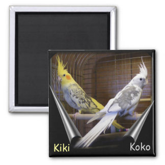 Customizable Bird magnets
