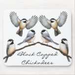 Customizable Black Capped Chickadees Mousepad