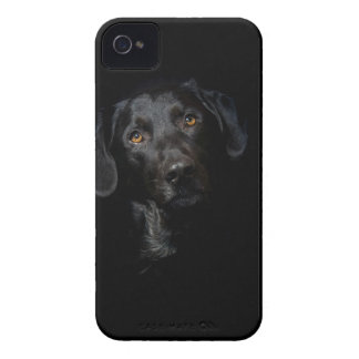 Customizable Black Labrador Retriever iPhone 4 Cover