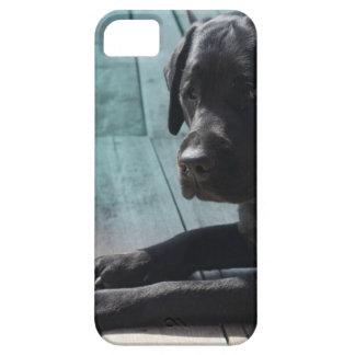 Customizable Black Labrador Retriever iPhone SE/5/5s Case