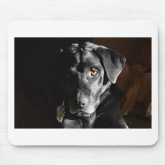 Customizable Black Labrador Retriever Mouse Pad