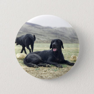 Customizable Black Labrador Retriever Pinback Button