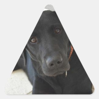 Customizable Black Labrador Retriever Triangle Sticker