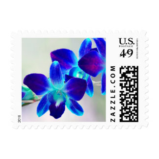 Customizable Blue Dendrobium Orchid Postage Stamps