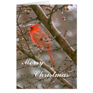 CUSTOMIZABLE CHRISTMAS CARD/BRIGHT RED CARDINAL CARD