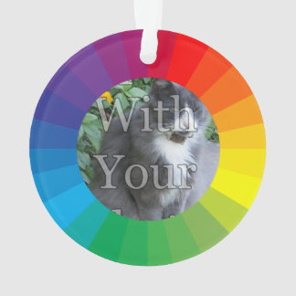 Customizable Circle Frame: Spectrum Collection Ornament