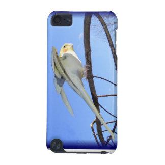 Customizable Cockatiel Case 1