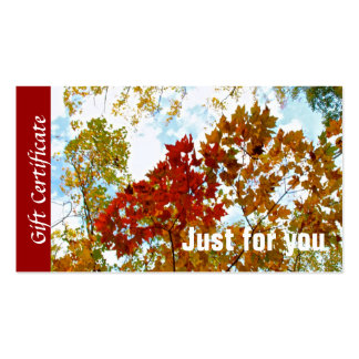 Customizable Colorful Fall Leaves Gift Certificate Double-Sided Standard Business Cards (Pack Of 100)