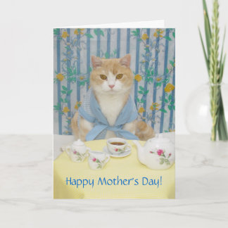 Customizable Cute/Funny Cat Card