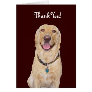 "Customizable Dog/Lab ""Thank You!"" Card"