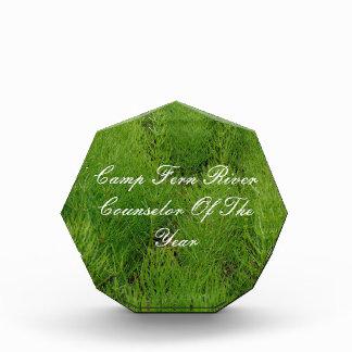 Customizable Ferns Acrylic Award