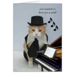 Customizable Funny Cat Greeting Cards