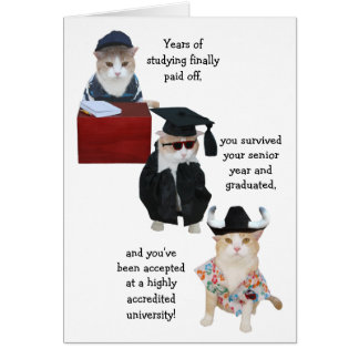 Customizable Funny Cat High School Graduation Card