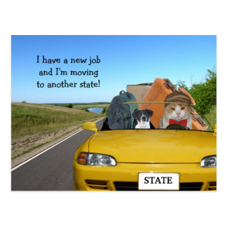 Customizable Funny Cat/Kitty Moving Out of Town Postcard