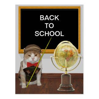 Customizable Funny Cat Teacher Back to School Postcard