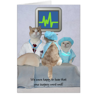 Customizable Funny Cats/Kitties Get Well Greeting Card
