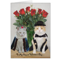 Customizable Funny Cats Valentine Greeting Cards