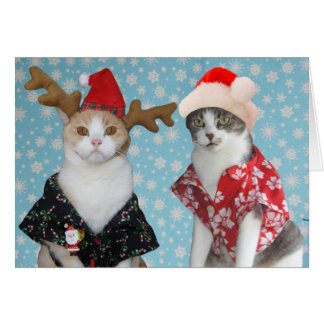 Customizable Funny Christmas Cats Card