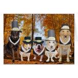 Customizable Funny Dog Pilgrims Thanksgiving Card