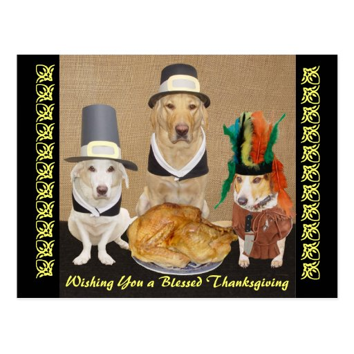 Customizable Funny Dogs Happy Thanksgiving Post Cards