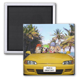 Customizable Funny Dogs in Convertible Magnet