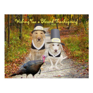 Customizable Funny Dogs/Labs Thanksgiving Postcard