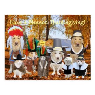 Customizable Funny Pets Pilgrims and Indians Postcard