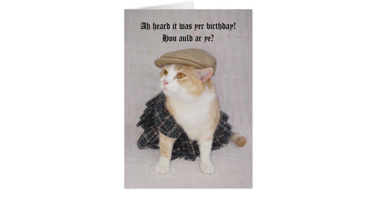 Customizable Funny Scottish Fold Scottish Birthday Card