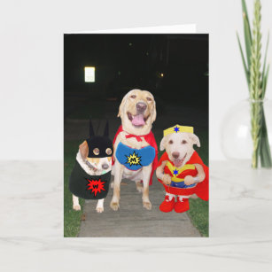 Yellow Lab Gifts On Zazzle