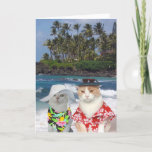 "Customizable Funny Surfer Cats/Kitties Anniversary Card<br><div class=""desc"">A humorous card with a Hawaiian theme that could be customized for one spouse to give the other or for a friend to give a couple. You can customize the text, change the fonts, font size and color. You could delete the background picture on the front (which is thanks to...</div>"