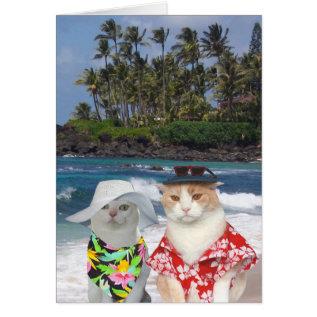 Customizable Funny Surfer Cats/kitties Anniversary Card at Zazzle