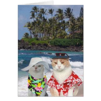 Customizable Funny Surfer Cats/Kitties Anniversary Greeting Card