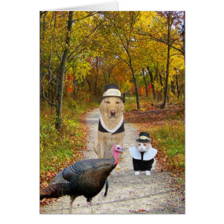 Customizable Funny Thanksgiving Card