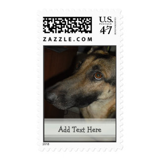 Customizable German Shepherd Postage Stamp